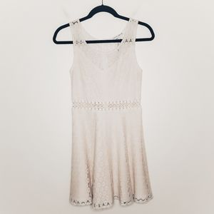 Collective Concepts Lace Fit And Flare Dress